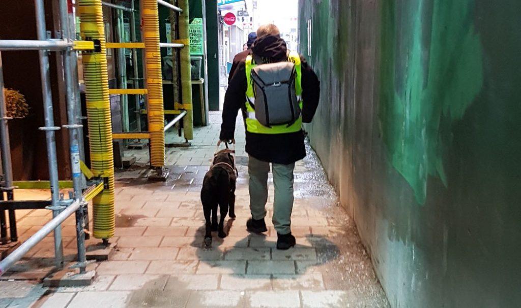 Jag och hunden sedda bakifrån när vi går på Götgatan under några byggnadsställningar.